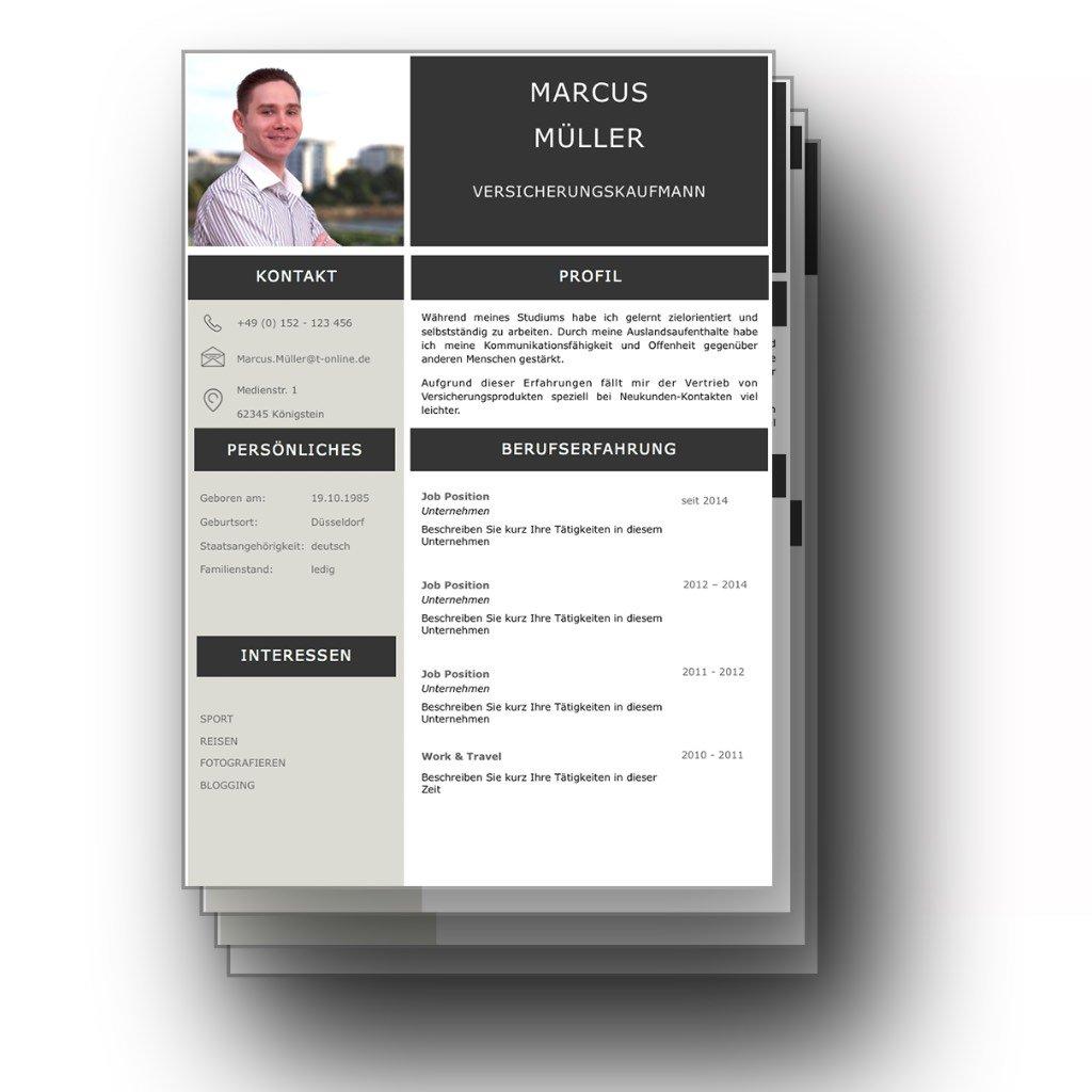 4 Seiten Bewerbungsvorlage Platinum Candidate Image