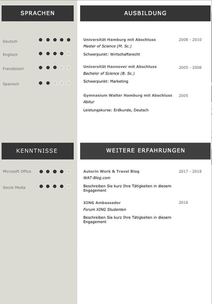 Lebenslaufvorlage Cv Platinum Candidate In Deutsch Download